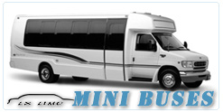 Manhattan Mini Bus rental